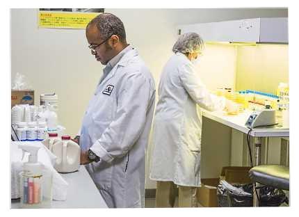 Εργαστηριακές Δοκιμές και Αναλύσεις Σταθεροποιημένου Ζελέ Αλόης Βέρα